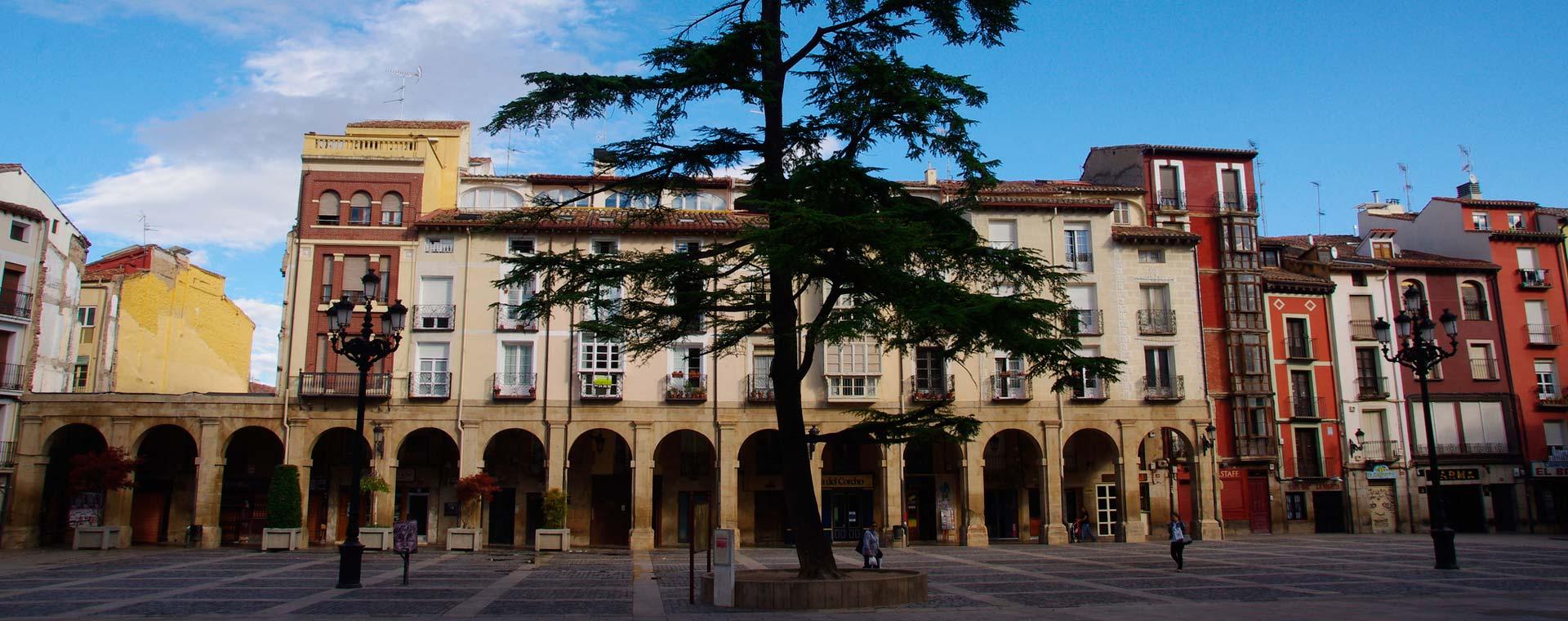 Ginkana en Logroño