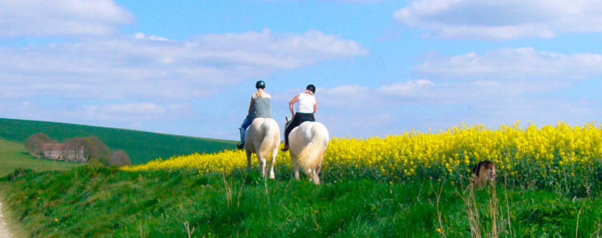 Experiencia montar a caballo